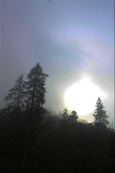 February 2013 066